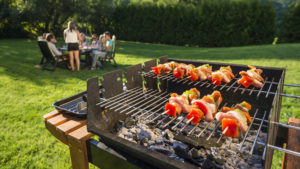 Barbecue jetable + jardin